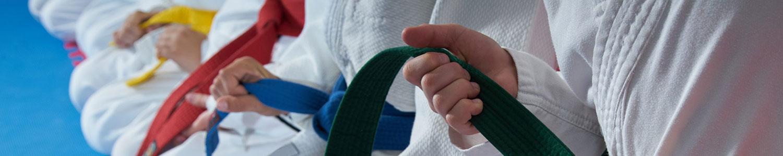 disciplines judo club saint barthélemy d'anjou judo taiso ne waza ju jitsu